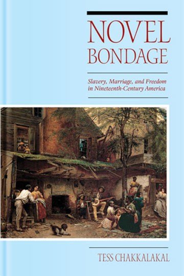 Novel Bondage: Slavery, Marriage, and Freedom in Nineteenth-Century American